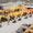 Поставка бу строительной и специальной техники из за рубежа - Изображение #2, Объявление #1673431