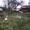 Дача в Новополоцке Шнитки Нефтяник-1 ул.6-я Линия-119 - Изображение #7, Объявление #1681386